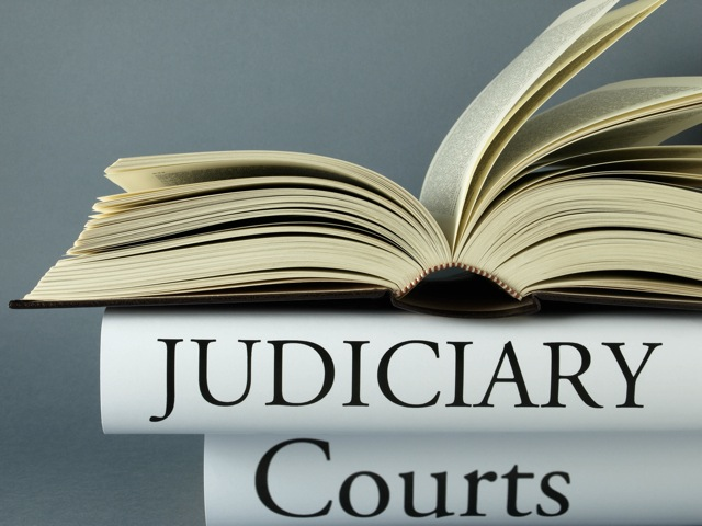 Judicial Review, Law, Practice